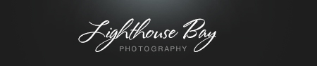 Byron Bay Wedding Photography | Wedding and Portrait photography logo